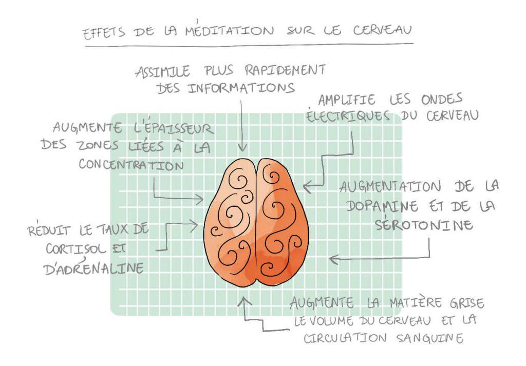 méditation se détendre effet sur le cerveau