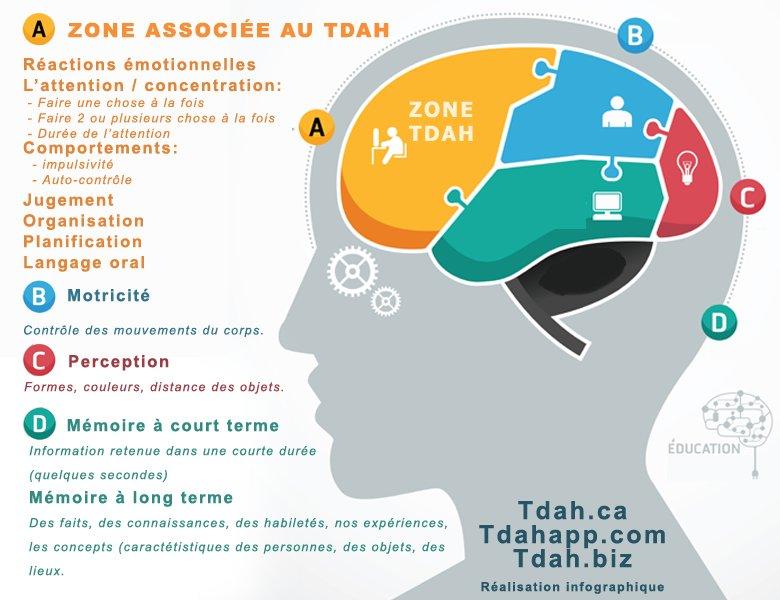 infographie TDA TDAH neuro atypique